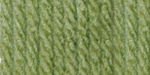 Bernat Super Value Solid Yarn - Fern
