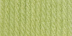 Bernat Super Value Solid Yarn - Soft Fern