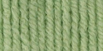 Bernat Waverly Yarn - Honeydew Green