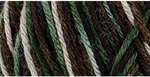 Caron Simply Soft Camo Yarn 4 oz - Mash Camo