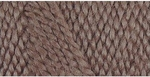 Caron Simply Soft Light Yarn - Light Taupe