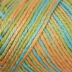 Caron Simply Soft Paints Yarn 4 oz - Charisma