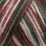 Caron Simply Soft Paints Yarn 4 oz - Country Charm