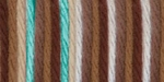 Caron Simply Soft Paints Yarn - Driftwood