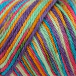 Caron Simply Soft Paints Yarn 4 oz - Rainbow Bright