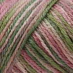 Caron Simply Soft Paints Yarn 4 oz - Rose Garden