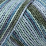 Caron Simply Soft Paints Yarn 4 oz - Spring Brook
