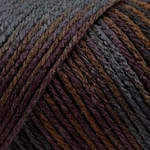 Caron Simply Soft Paints Yarn 4 oz - Sticks & Stones