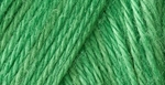 Caron Simply Soft Yarn 6 oz - Green