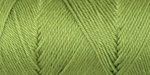 Caron Simply Soft Yarn 6 oz - Pistachio