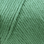 Caron Simply Soft Yarn 6 oz - Sage