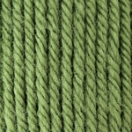Patons Canadiana Yarn - Cedar Green