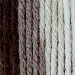Patons Canadiana Yarn - Toffee Crunch