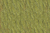 Patons Classic Wool Yarn - Leaf Green