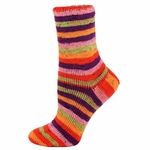 Premier Wool Free Sock Yarn - Farm Stand