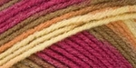 Red Heart Super Saver Yarn - Marrakesh