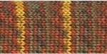Regia Sock Yarn Prints -  Allround Herbst (Discontinued)