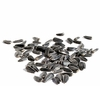 Organic BLACK IN-SHELL SUNFLOWER SEEDS - 25 LBS