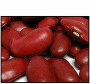 Organic RED KIDNEY BEANS - 25 LBS