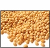 Organic SPROUTING MILLET (with hull) - 25 LBS - OUT OF STOCK