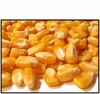 Organic WHOLE KERNEL YELLOW CORN - 25 LBS