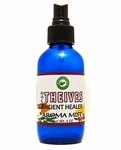 Doc Theives Ancient Healer Aroma Mist These Oils in combination are strongly anti-viral, anti-bacterial, and anti-funga
