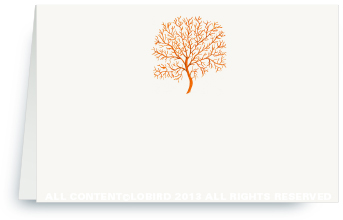 coral fan- orange - place card