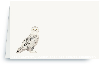 Snowy Owl - Place Cards