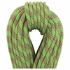 Beal Cobra II 8.6mmX60m Green Unicore Golden Dry