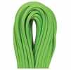 Beal Gully 7.3mmX50m Green Unicore Golden Dry