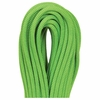 Beal Gully 7.3mmX60m Green Unicore Golden Dry
