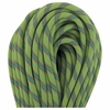 Beal Tiger 10mmX70m Green Unicore Dry Cover