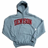 Denison Powerblend Fleece Hoodie Heather Grey