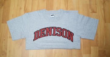 Denison T-Shirt Grey