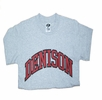 Denison Youth Generic Shirt Grey