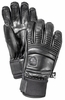 Hestra Fall Line Glove Black (2015)