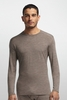 Icebreaker Mens Oasis Long Sleeve Crewe Trail Heather (Autumn 2014)