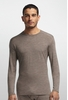 Icebreaker Mens Oasis Long Sleeve Crewe Trail Heather (Close Out)