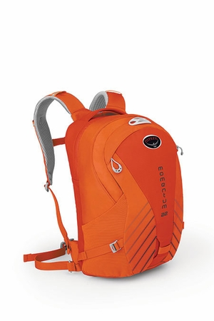 Osprey Momentum 22 Atomic Orange