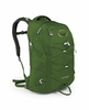 Osprey Quasar Fern Green (Close Out)