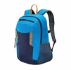 Patagonia Anacapa Pack 20L Andes Blue