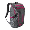 Patagonia Black Hole Pack 25L Feather Grey/ Radiant Magenta