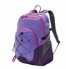 Patagonia Chacabuco Pack 32L Violetti