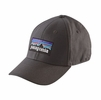 Patagonia P-6 Logo Stretch Fit Hat Forge Grey