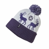 Patagonia Powder Town Beanie Nature Town: Tempest Purple