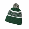 Patagonia Powder Town Beanie Pow Stripe: Malachite Green