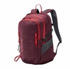 Patagonia Refugio 28L Dark Currant