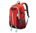 Patagonia Refugio Pack 28L Backpack Catalan Coral (Spring 2014)
