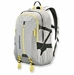 Patagonia Refugio Pack 28L Backpack Tailored Grey (Spring 2014)