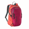 Patagonia Refugio Pack 28L Craft Pink